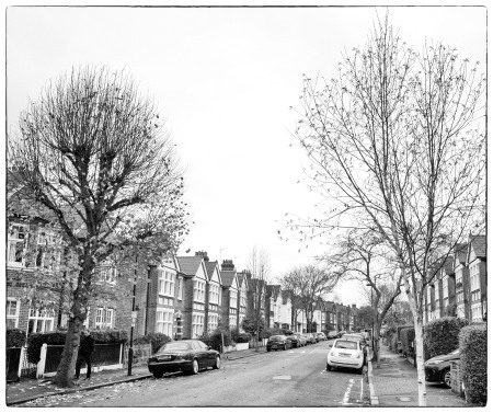 Fawnbrake Trees Winter_B&W
